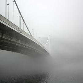 The Fog by Szabolcs Piller - Buildings & Architecture Bridges & Suspended Structures