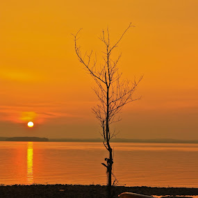 summer sunset by Ezuwan Razali - Landscapes Waterscapes