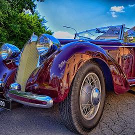 Vintage Elegance by Marco Bertamé - Transportation Automobiles ( car, vintage, numer, 1938, chrome, 3, number plate, 0, flood lights, talbot, pink, car wings, 9, 8, bumper, oldtimer )