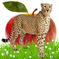 Food Chain Game APK for Bluestacks