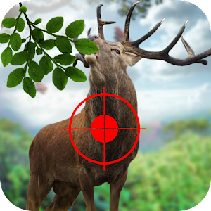 New Deer Hunting Fun For PC
