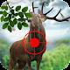 Hunterss of Wild Deer 1.0