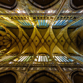 St. Vitus Cathedral by Bojan Porenta - Buildings & Architecture Places of Worship ( interior, czech republic, cathedral, prage,  )