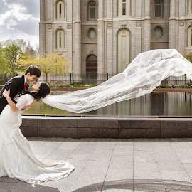 Love is in the Air by David Terry - Wedding Bride & Groom ( temple wedding, wind, wedding photography, romantic, salt lake temple, romance, love, mormon, kiss, wedding, weddings, bride and groom, lds )