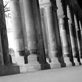 Imambara by Avijit Saha - Abstract Patterns ( history, pattern, black and white, imambara )