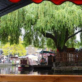 camden by Kathleen Devai - City,  Street & Park  Street Scenes ( water, london, boat, canal, people )