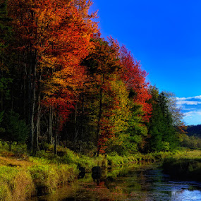 Fall on the Blackwater  by Ernie Page - Landscapes Waterscapes ( black water river, state parks, west virginia, canaan valley state park, canaan valley, west virginia state parks, fall color )
