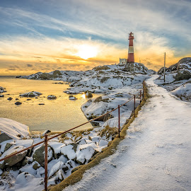 Winter dream by Richard Larssen - Landscapes Sunsets & Sunrises