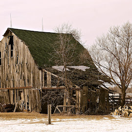 Useful Past by Wally VanSlyke - Buildings & Architecture Decaying & Abandoned ( farm, indiana, barn, vintage, midwest, agriculture, country )