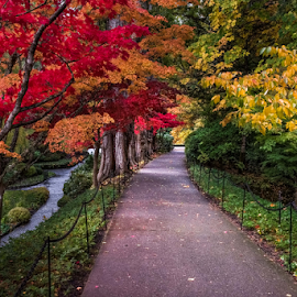Fall by Darren Sutherland - City,  Street & Park  City Parks