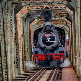 Train going thru bridge by Mariska Visagie - Transportation Trains ( creation photography )
