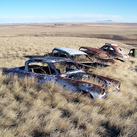 Abandoned Cars near Shelby by James Oviatt - Transportation Bicycles