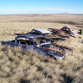 Abandoned Cars near Shelby by James Oviatt - Transportation Bicycles