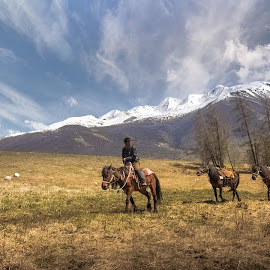 - Altai Herdsman - by Jimmy Kohar - Landscapes Travel