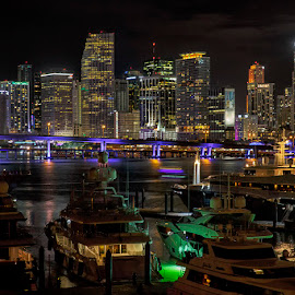 Miami Skyline by Jay Stout - City,  Street & Park  Skylines