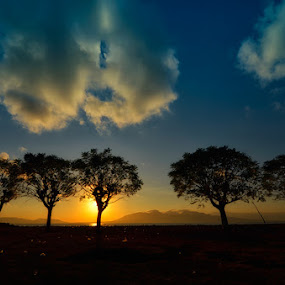 Berbaris Menunggu Pagi by Dhiean Kukuh - Landscapes Prairies, Meadows & Fields ( sunrise, sun )