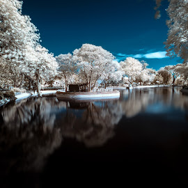 IR by Rizvan Talha Kaynak - City,  Street & Park  City Parks ( tree, park, waterscape, infrared, d300, lake, nikon, landscape, hoya, r72 )