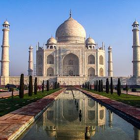 TAJ MAHAL, INDIA by Neelakantan Iyer - Buildings & Architecture Public & Historical (  )