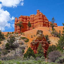 Brice Canyon - Hoo-doos I by Jane Spencer - Landscapes Caves & Formations ( national park, arizona, bryce, canyon, hoo-doos )