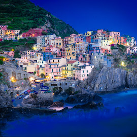 Manarola by David Long - City,  Street & Park  Vistas ( cinque terre, manarola, italy )