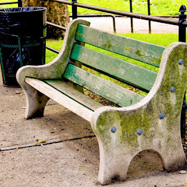 BENCH WITH CHARACTER by Jody Frankel - Artistic Objects Furniture