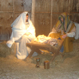 Live nativity by Stephen Deckk - Public Holidays Christmas
