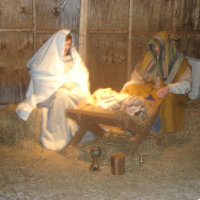 Live nativity by Stephen Deckk - Public Holidays Christmas (  )