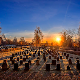 by Kennet Brandt - City,  Street & Park  Cemeteries