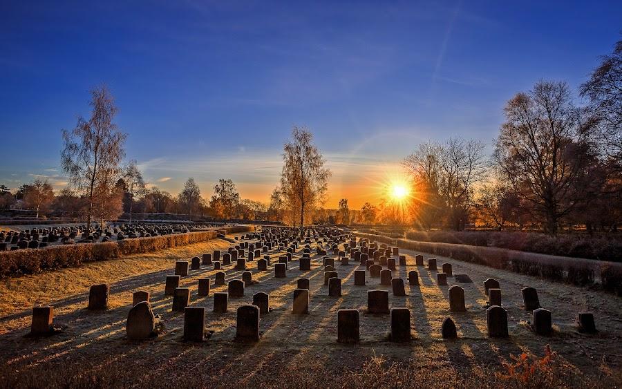 by Kennet Brandt - City,  Street & Park  Cemeteries