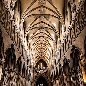 Nave Roof in Wells Cathedral.jpg