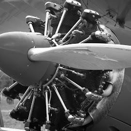 Stunning Steerman by Andrew Conley - Transportation Airplanes ( washington, steerman, paine field airshow, airplane, airshow )