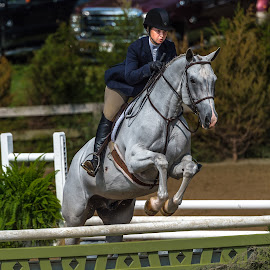 Jumping by Mike Watts - Animals Horses ( jumping, horse, horse show, blowing rock )