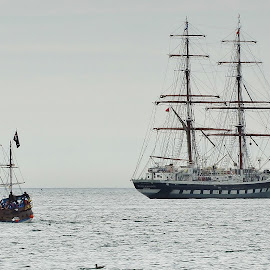 Little tallship and Large tallship  by Eloise Rawling - Transportation Boats ( sailing, ship, tallship, sail boat )