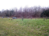 Photo 5 / 8 - Jan 2019, Watts Gallery, Orchard pre-planting