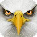 Free Ultimate Bird Simulator APK for Windows 8