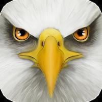 Ultimate Bird Simulator For PC (Windows And Mac)