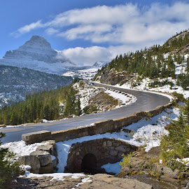 Going to the Sun Road by Don Evjen - Landscapes Mountains & Hills ( forests, mountains, road trip, montana, snow, blue skies, stone bridge )