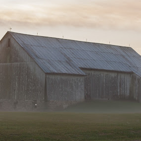 good morning barn by Matthew Lindsey - Buildings & Architecture Other Exteriors ( barn, barn with fog, fog, morning )