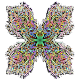 Julian Polar Butterfly 2 by Peggi Wolfe - Illustration Abstract & Patterns ( polar, abstract, butterfly, wolfepaw, gift, unique, bright, illustration, fun, digital, print, decor, pattern, color, unusual, julian, fractal )