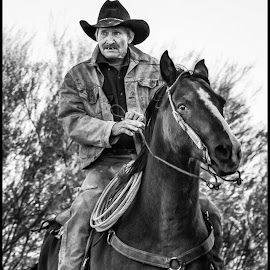 Cowboy and Horse by Dave Lipchen - Black & White Portraits & People ( cowboy,  )