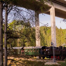 Steam Locomotive MLV Zwettl Sturmexpress 3 by Franz  Adolf - Transportation Trains ( steam locomotive, locomotive, train )