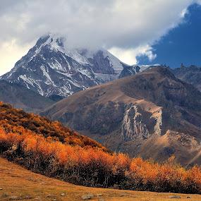Mountain Kazbek by Tomasz Budziak - Landscapes Mountains & Hills ( mountains, georgia, forest, landscapes,  )