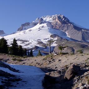 Mt. Hood by Karl Jones - Landscapes Mountains & Hills (  )