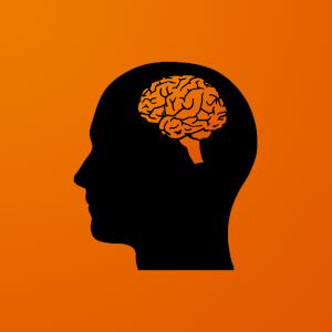 Mnemonist - Memory And Brain Training For PC / Windows 7/8/10 / Mac – Free Download