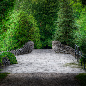 Stone Bridge in a Forest by Elvis Dorencec - Landscapes Forests ( forest, bridge, landscape, webster's falls )