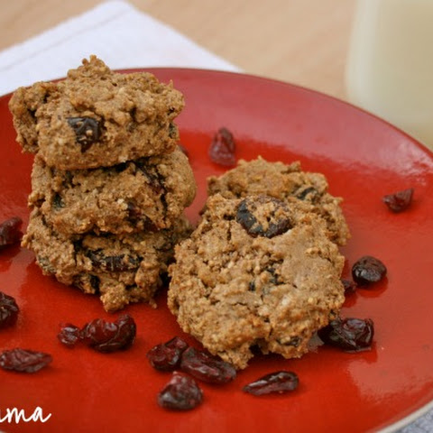 Grain Free Oatmeal Raisin Cookie