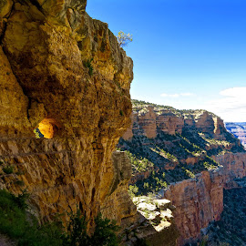 View from Grand Canyon by Michael Villecco - Landscapes Caves & Formations ( vistas, colorful, arizona, travel photography, grand canyon,  )