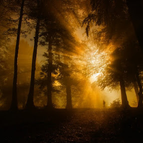 Lost by Erol Ayyıldız - Landscapes Sunsets & Sunrises ( nature, turkey, kartepe, people )