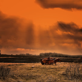by Ray Sweeting - Landscapes Prairies, Meadows & Fields