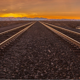 Sunset on the Tracks by Mike Lee - Landscapes Sunsets & Sunrises ( orange, railroad tracks, peaceful, into the sunset, railroad, sunset )
